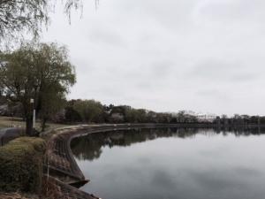 久喜菖蒲公園の風景