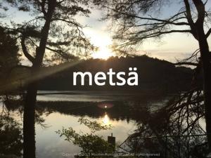 metsaイメージ画像