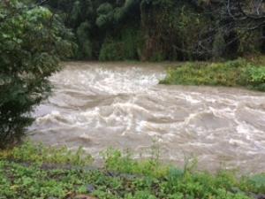 台風による川の様子