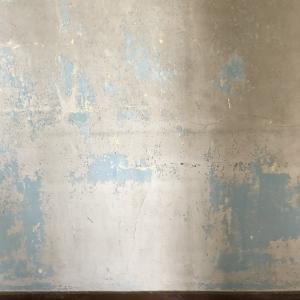 米軍ハウスのシャビーな壁面