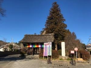 塩船観音寺の写真