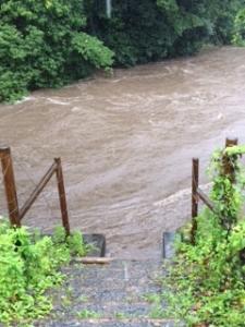台風11号真只中の川の様子