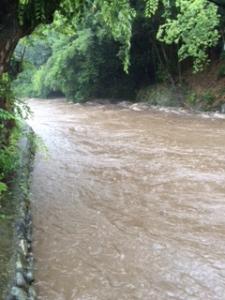 台風11号による川の氾濫