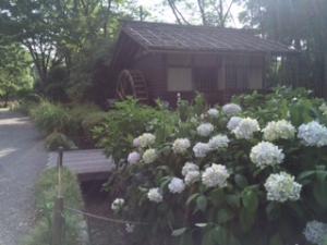 府中市郷土の森博物館の画像3
