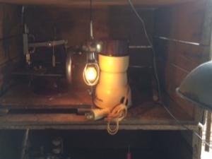 riversidefarmのランプ