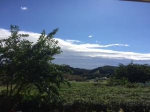 台風後の晴天