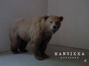 大きな熊の剥製