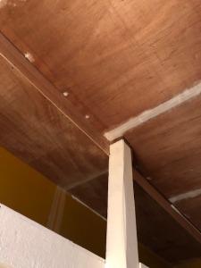 事務所の天井